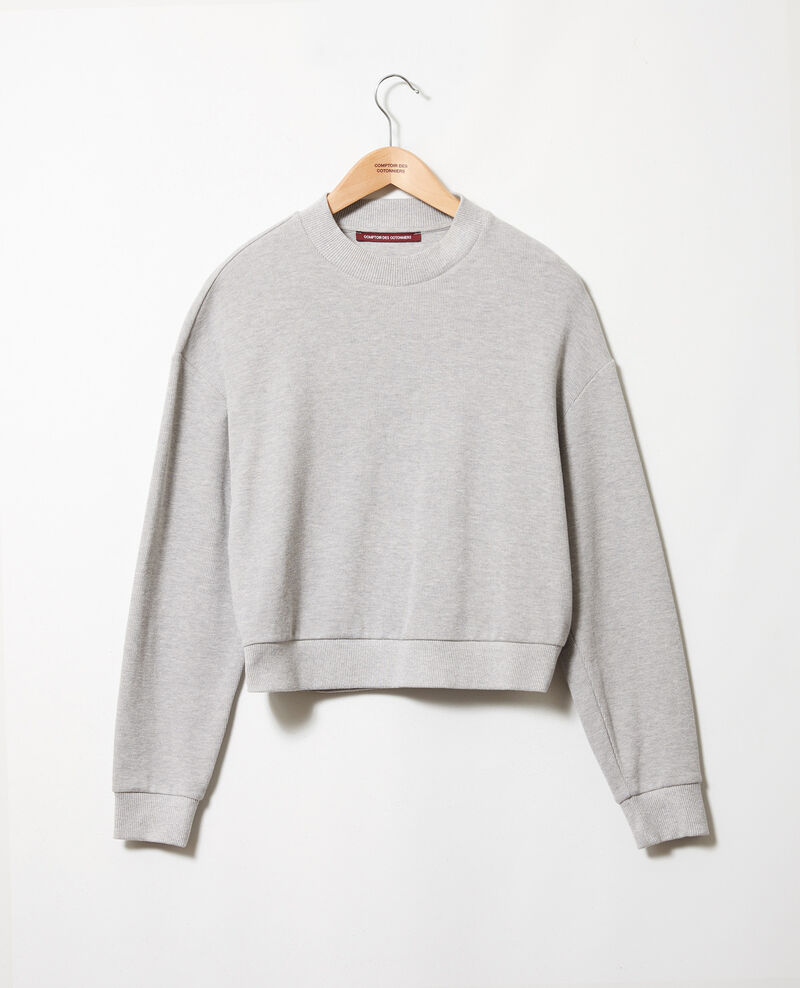 Short sweatshirt Light grey Jizela