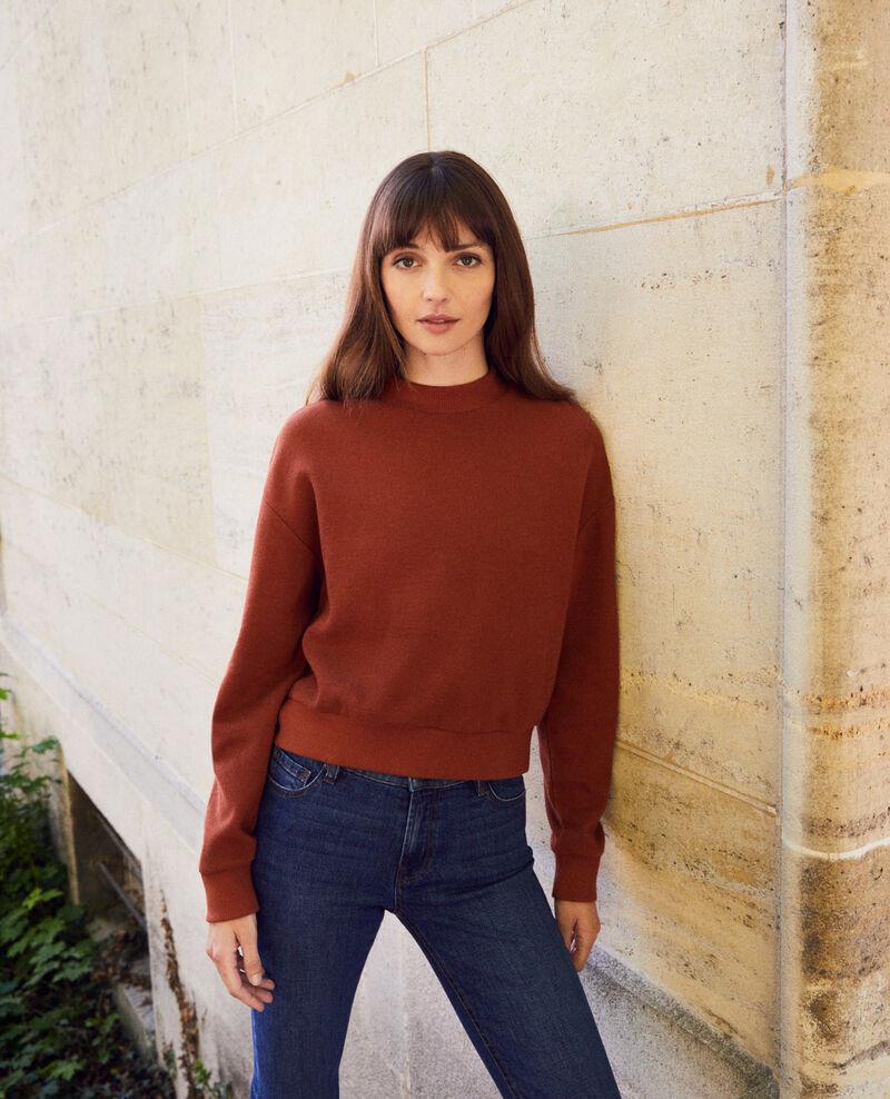 Short sweatshirt Brandy brown Jizela