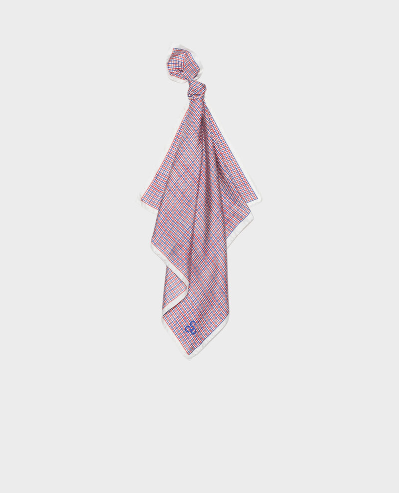 Silk scarf Surf the web Loukas