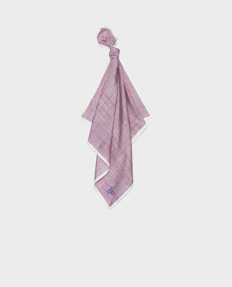 Silk scarf Surf the web Loukas