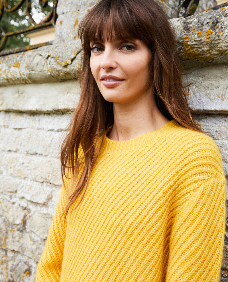 Rib knit jumper Spicy mustard Josue